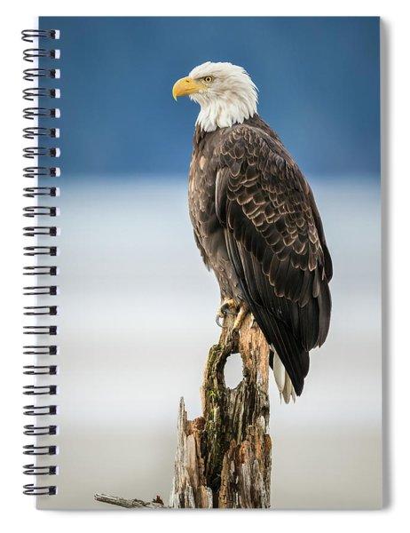 Bald Eagle On Snag Spiral Notebook