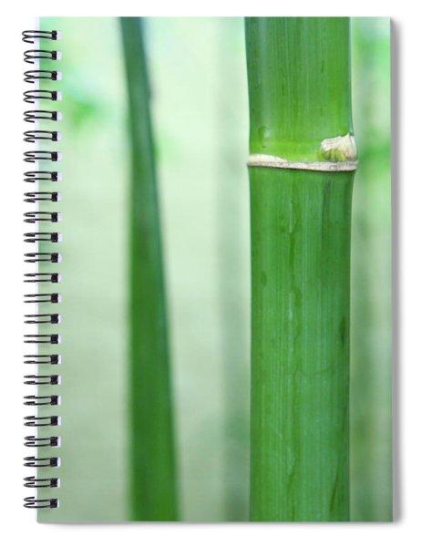 Bamboo 0312 Spiral Notebook