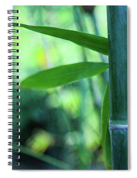 Bamboo 0321 Spiral Notebook
