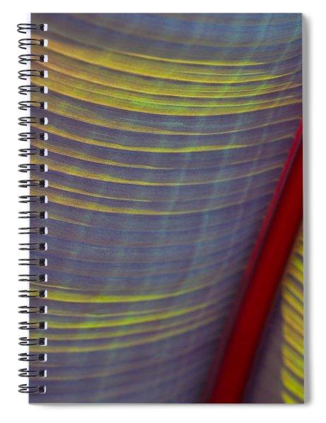 Banana Leaf 8597 Spiral Notebook