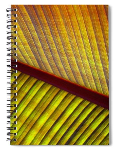 Banana Leaf 8603 Spiral Notebook