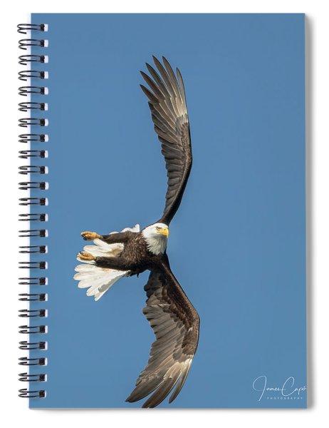 Banking Bald Eagle Spiral Notebook