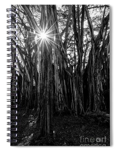 Banyan Sunburst Spiral Notebook