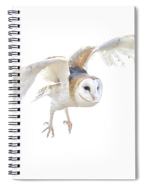 Barn Owl In Flight Spiral Notebook