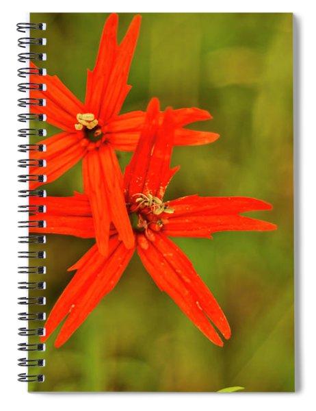 Bass Lake Fire Pinks Spiral Notebook