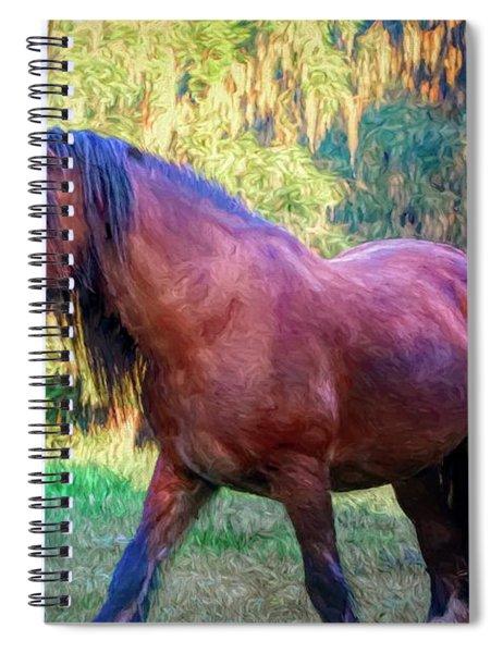 Bay Vanner Spiral Notebook