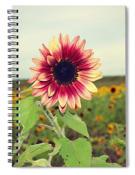 Be You Spiral Notebook