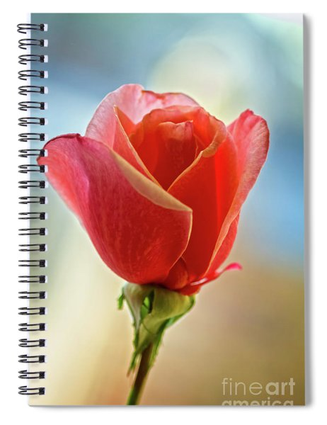 Beautiful Red Bud Spiral Notebook