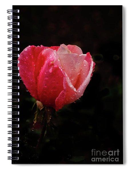 Beautiful Wet Rose Spiral Notebook