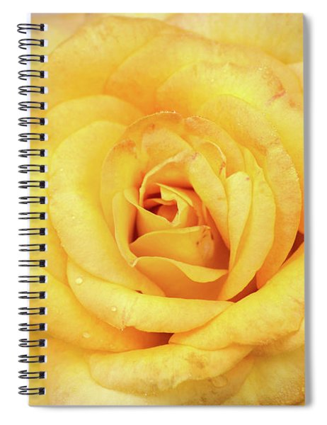 Beautiful Yellow Rose Spiral Notebook