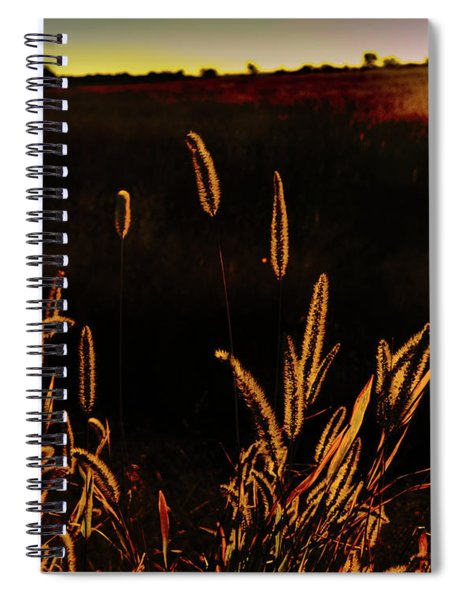 Beauty In Weeds Spiral Notebook