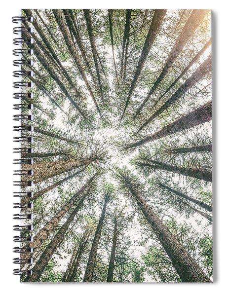 Below The Treetops Spiral Notebook