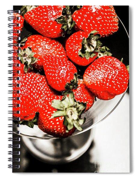 Berrini Spiral Notebook