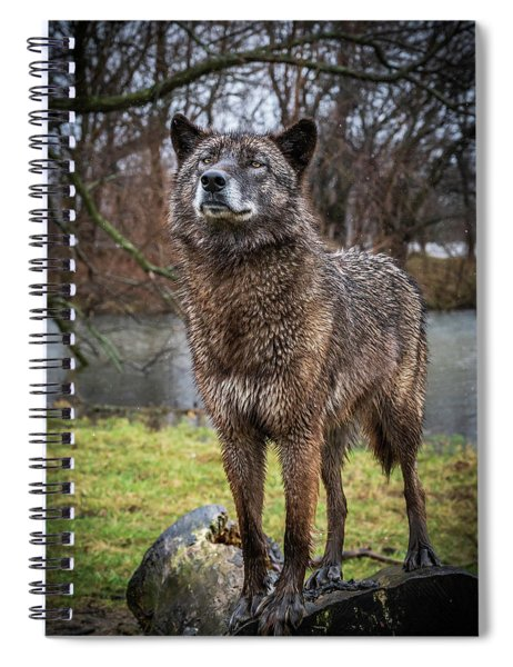 Best Of Show Pose Spiral Notebook