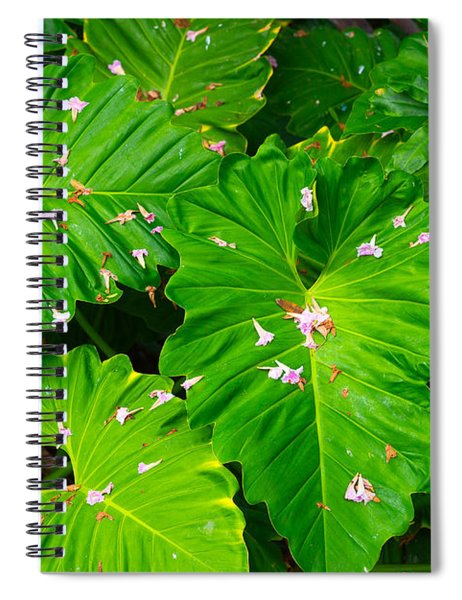 Big Green Leaves Spiral Notebook