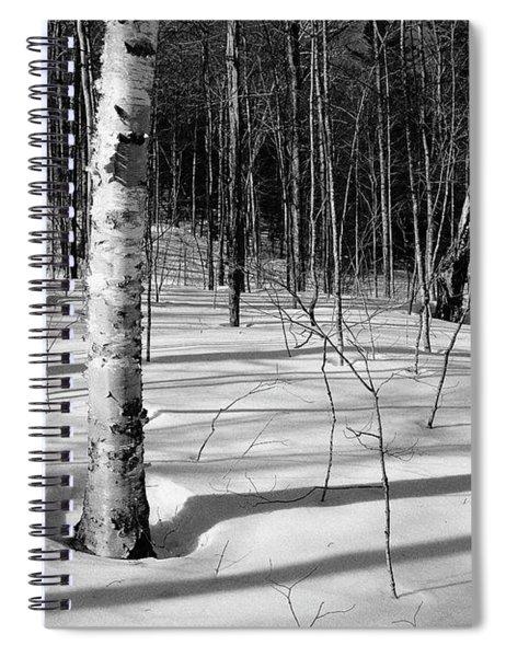 Birch Shadow. Spiral Notebook