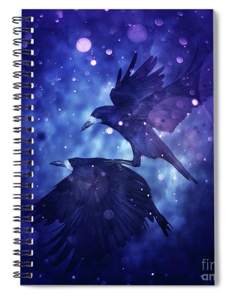 Bird Kingdom  3 Spiral Notebook