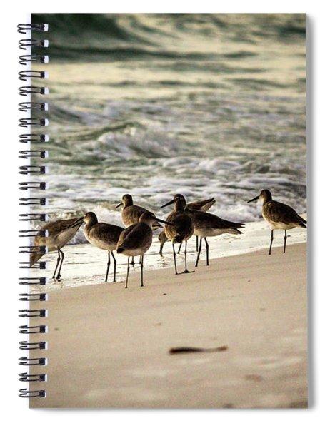 Birds On The Beach Spiral Notebook