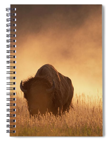 Bison In The Dust 2 Spiral Notebook