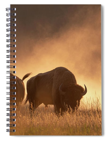 Bison In The Dust Spiral Notebook