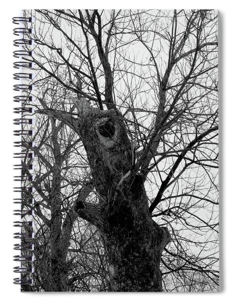Black Against Gray Spiral Notebook
