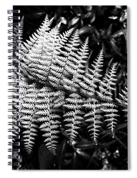 Black And White Fern Spiral Notebook