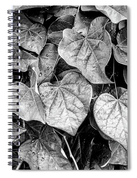 Black And White Leaves From A Red Leaf Tree Spiral Notebook