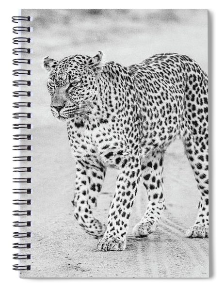 Black And White Leopard Walking On A Road Spiral Notebook