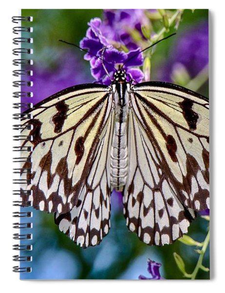 Black And White Paper Kite Butterfly Spiral Notebook