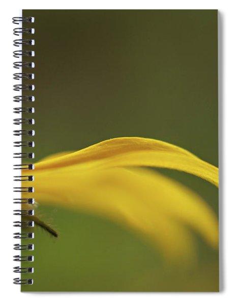 Black Eye Spiral Notebook