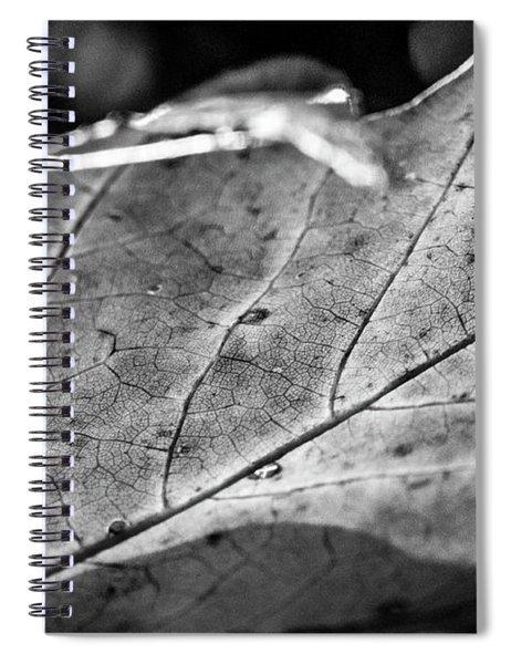 Black Leaf Spiral Notebook