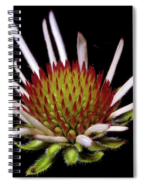 Black Sampson Spiral Notebook