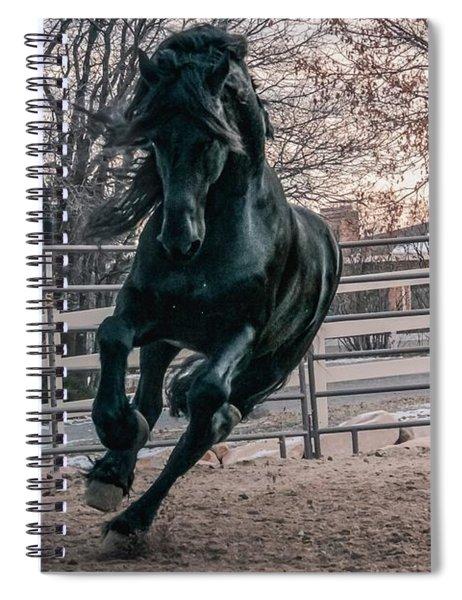 Black Stallion Cantering Spiral Notebook