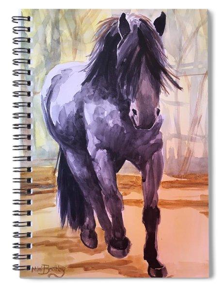 Black Stallion Spiral Notebook