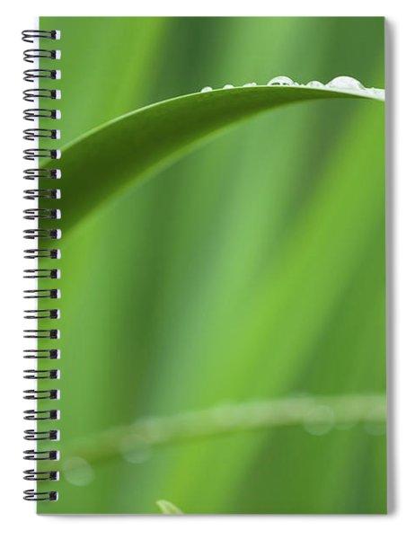 Blades 8594 Spiral Notebook
