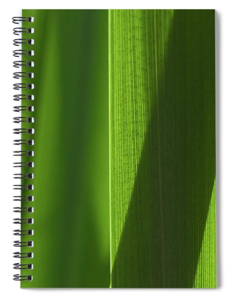 Blades 8851 Spiral Notebook