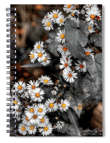 Blended Daisy's Spiral Notebook