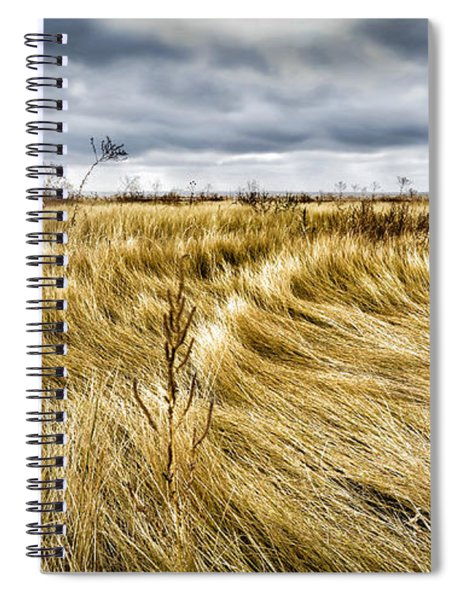 Blonde On Blonde Spiral Notebook