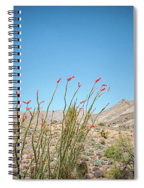 Blooming Ocotillo Spiral Notebook