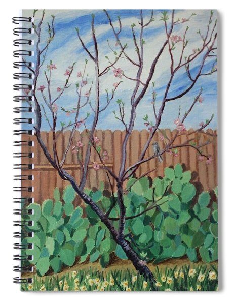 Blooming Peach In Our San Antonio Backyard Spiral Notebook