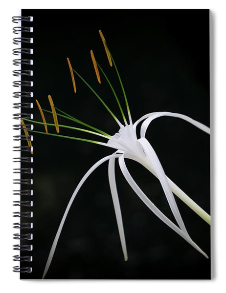 Blooming Poetry 2 Spiral Notebook