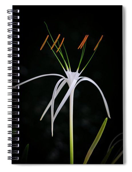 Blooming Poetry 3 Spiral Notebook