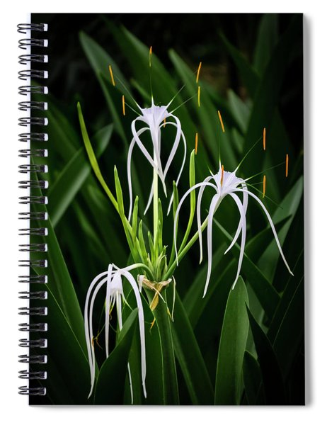 Blooming Poetry 4 Spiral Notebook