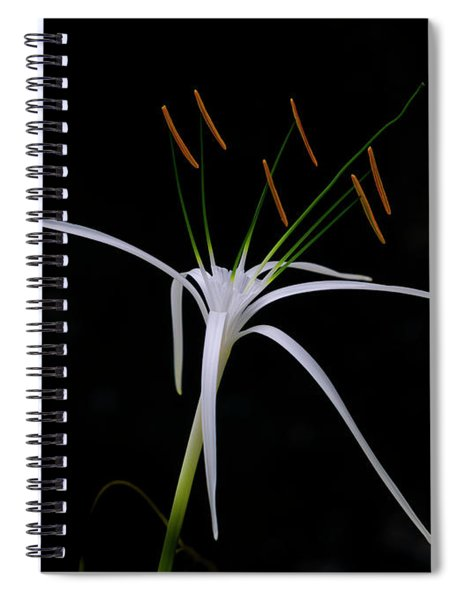 Blooming Poetry Spiral Notebook