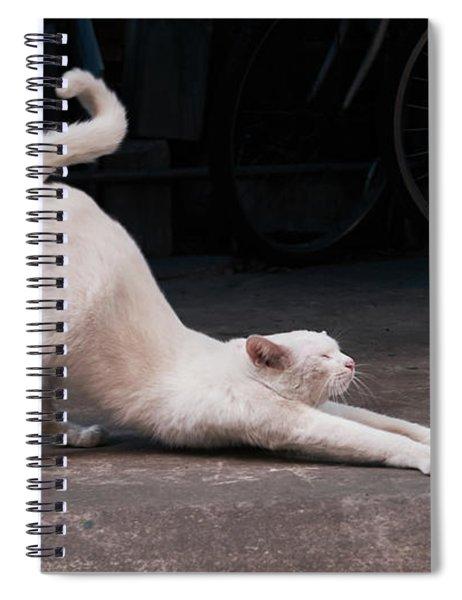 Blue 2 Spiral Notebook
