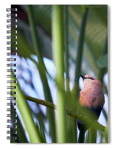 Blue-bellied Roller Spiral Notebook