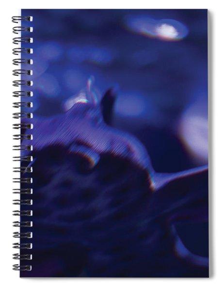 Blue Greeting Spiral Notebook