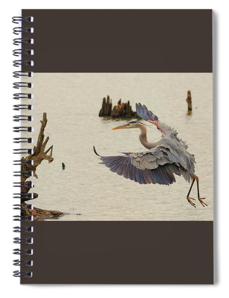 Blue Heron 2 Spiral Notebook
