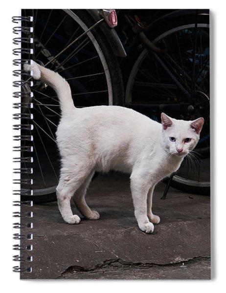 Blue IIi Spiral Notebook