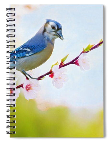 Blue Jay On Cherry Tree Spiral Notebook